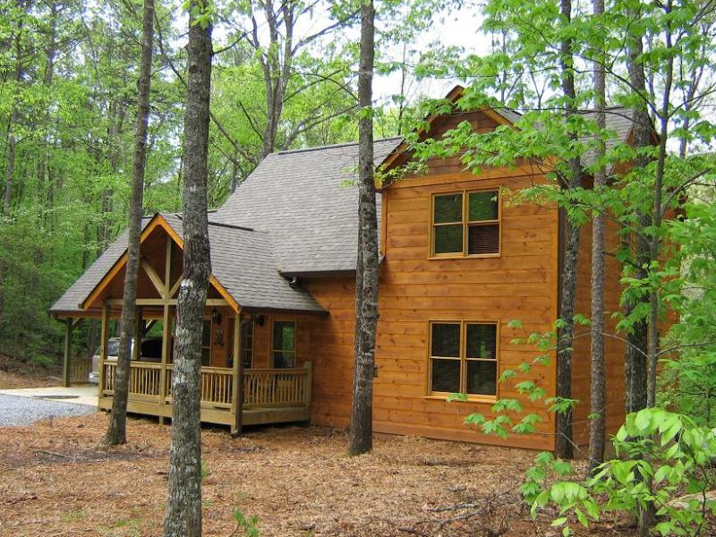 Front view on wooded lot - Mt Mist ~ Sleeps up to 6 - Ellijay - rentals