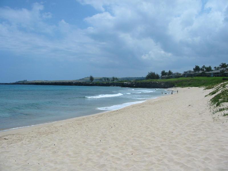 Ironwood Beach, Oneloa Bay - Beautiful Kapalua Bay Villa! - Kapalua - rentals