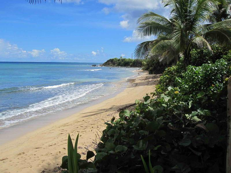 beach out front - At the Waves - Oceanfront Villas - Isla de Vieques - rentals