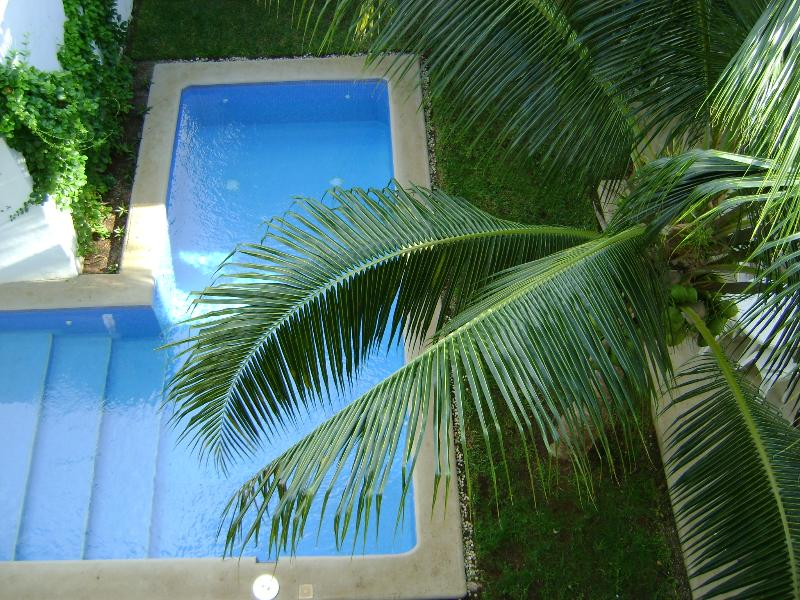 Center courtyard with swimming pool - Beautiful Penthouse Condo in Playa del Carmen, Mex - Playa del Carmen - rentals