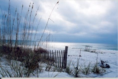North Beach 2nd Ave - Sea Clusion - Tybee Island - rentals