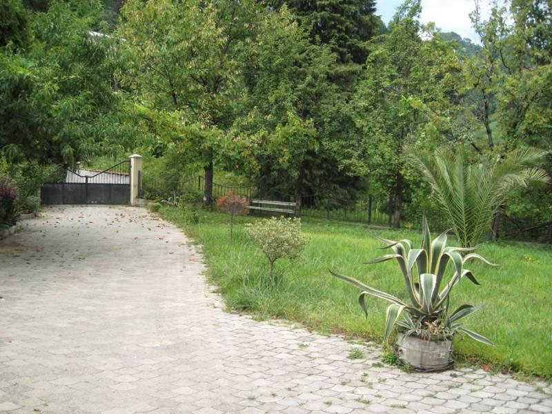 yard - House for rent in Chakvi,  Ajara - Batumi - rentals