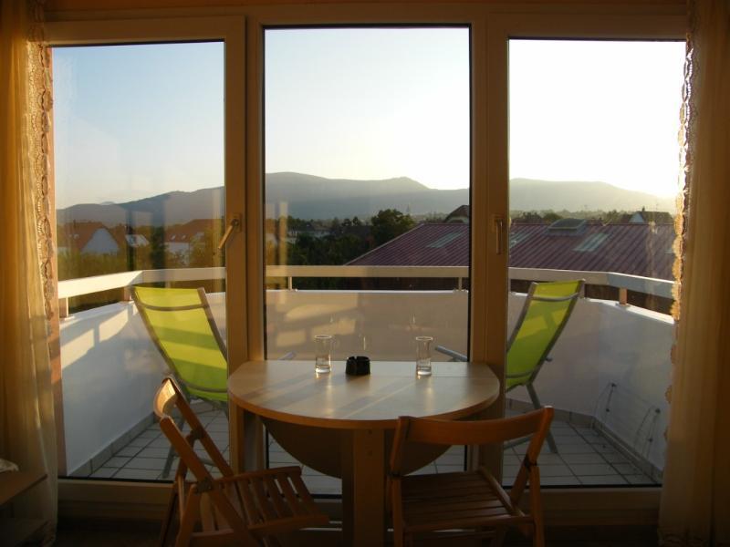 vue du studio 1 à obernai situe au dernier étage - location studio 1  vacances en alsace a obernai - Obernai - rentals