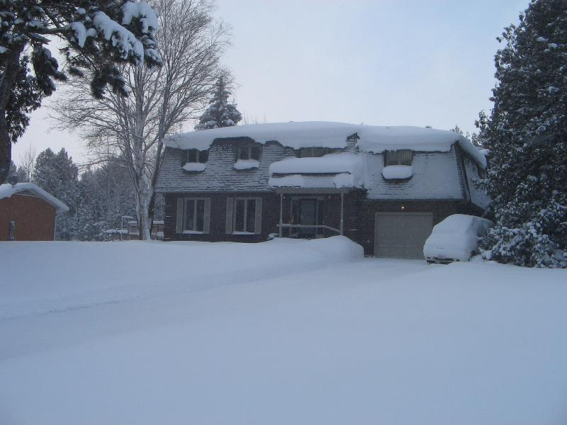 Winter Wonderland - Ski the Blue Mountains, Bruce Trail or Georgian Trail!! - Meaford - rentals