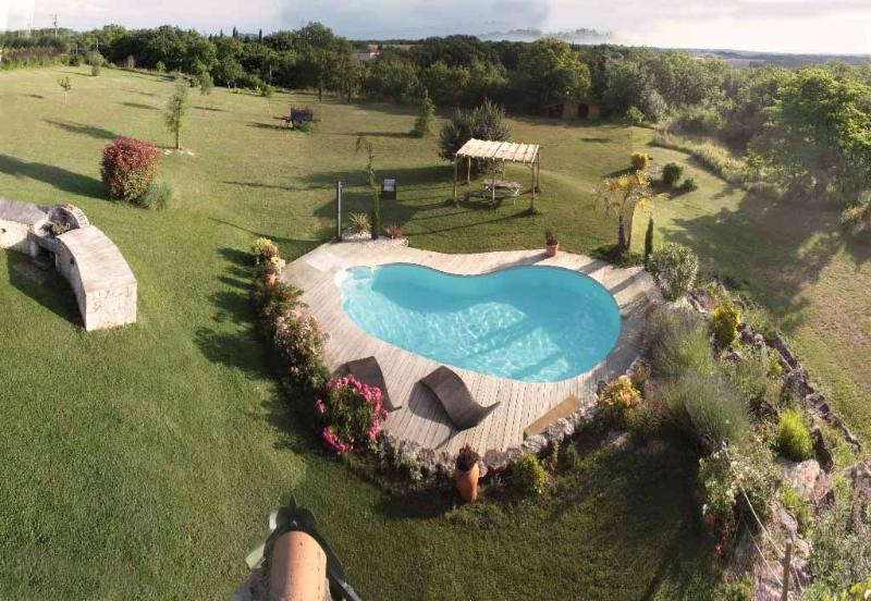 BBQ et Piscine - Superb villa heated pool & spa in the Southwest - Castelnau-de-Montmiral - rentals