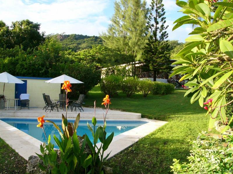Landscaped grounds with pool - Rabbit Hill  - idyllic Nature Lovers Retreat - Saint John Parish - rentals
