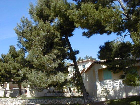 All of the property - Cozy 2 Bedroom Flat with a Pool, Provence - Maussane-les-Alpilles - rentals