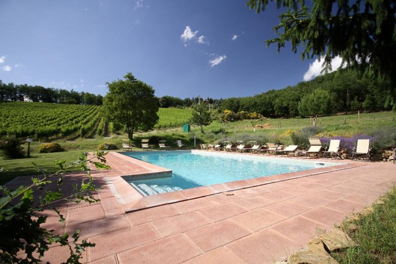 Podere Vignola farmhouse near Florence - Fienile - Image 1 - Florence - rentals