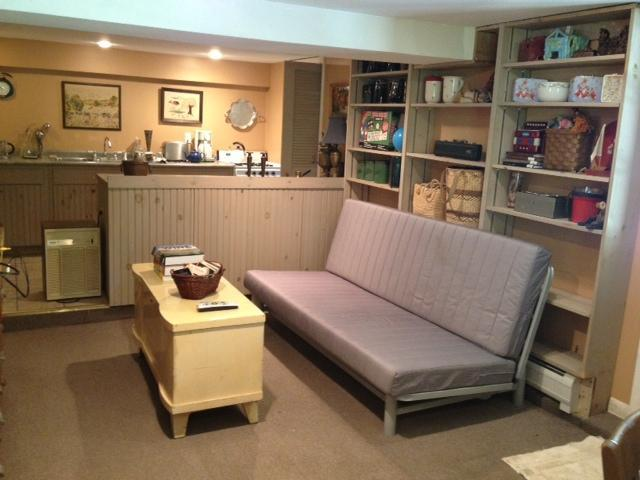 Living Room - Catskill Mountain View House/Hudson Valley Central - Red Hook - rentals