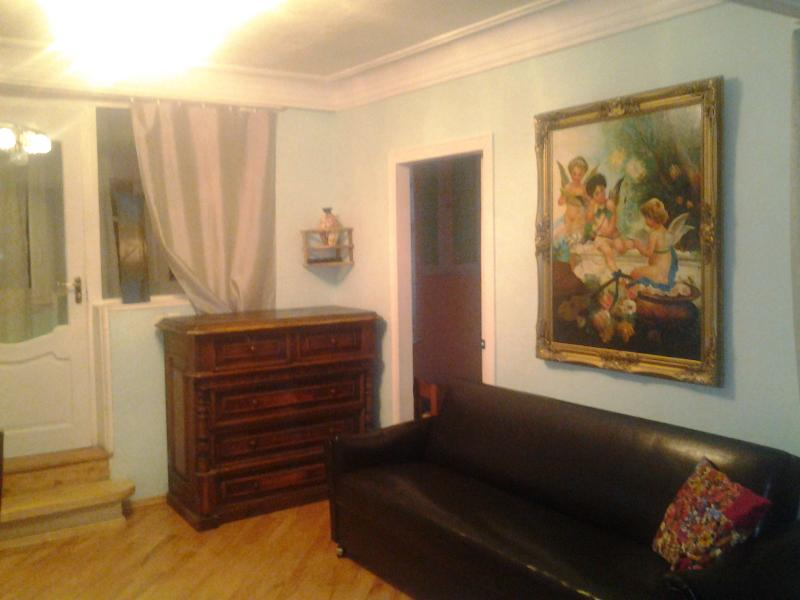 Amazing Location In Old Tbilisi-Rustaveli Avenue - Image 1 - Tbilisi - rentals