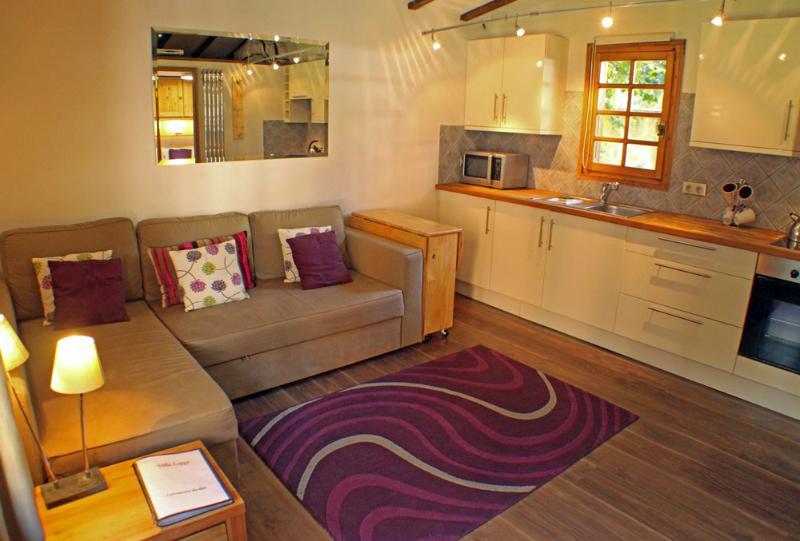 Mazot Loppe - Image 1 - Chamonix - rentals