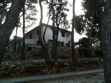 house - 8016  A2(2+1) - Jelsa - Jelsa - rentals