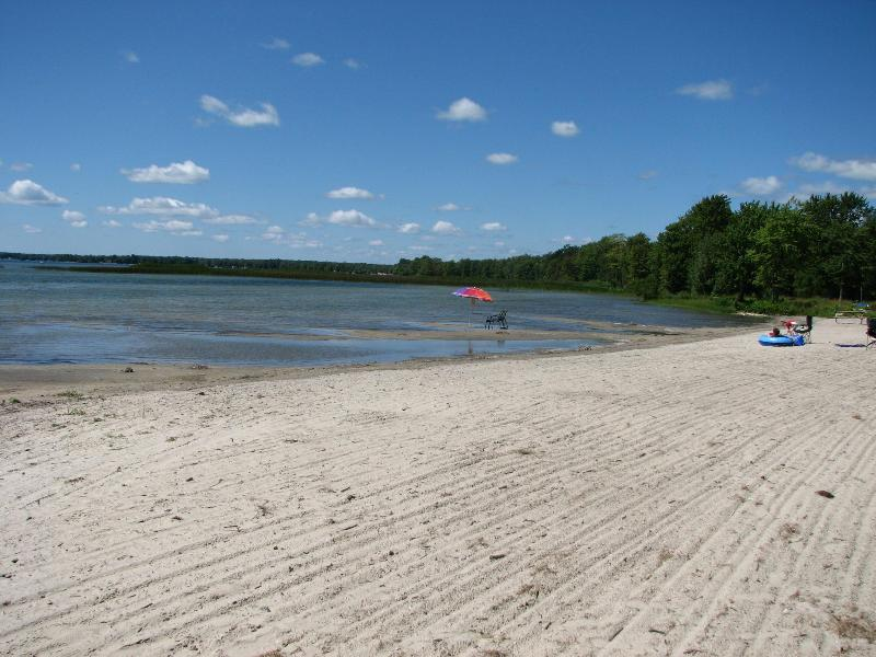 The Semi-Private Beach. Shallow walk-out up to 300m from shore. Great for kids - WATERFRONT 2 Bedroom Condo on Lake Simcoe - Brechin - rentals