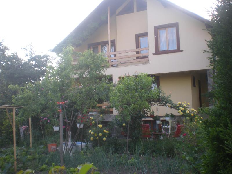 House for rent in beautiful maramures - Image 1 - Sighetu Marmatiei - rentals