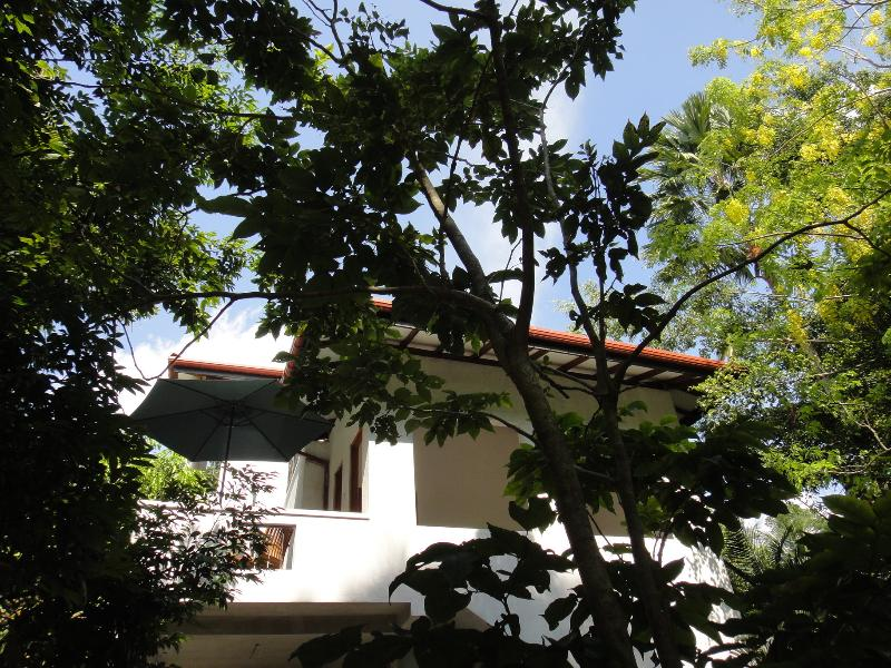 Tropical Trees-Galle/Unawatuna - Image 1 - Galle - rentals