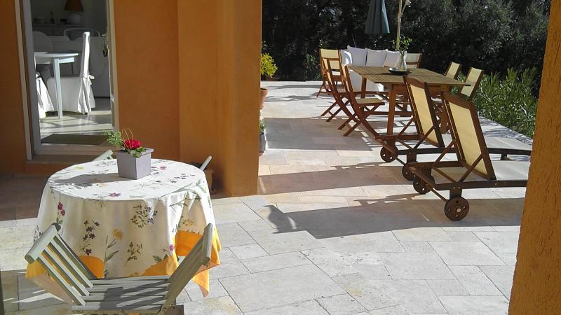 terrasse - Jolie Maison récente,belle vue campagne - Lorgues - rentals