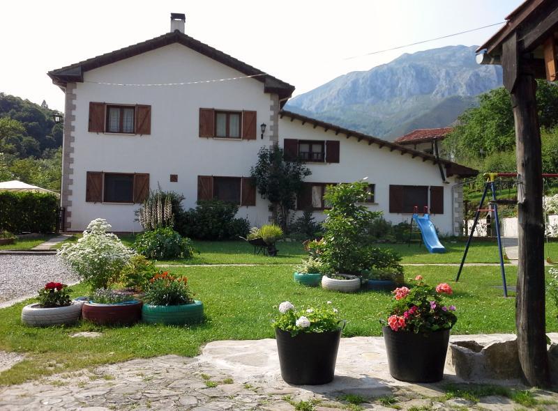 CASA JUANA -   Parque Nacional  Picos de Europa - Image 1 - Penamellera Alta Municipality - rentals