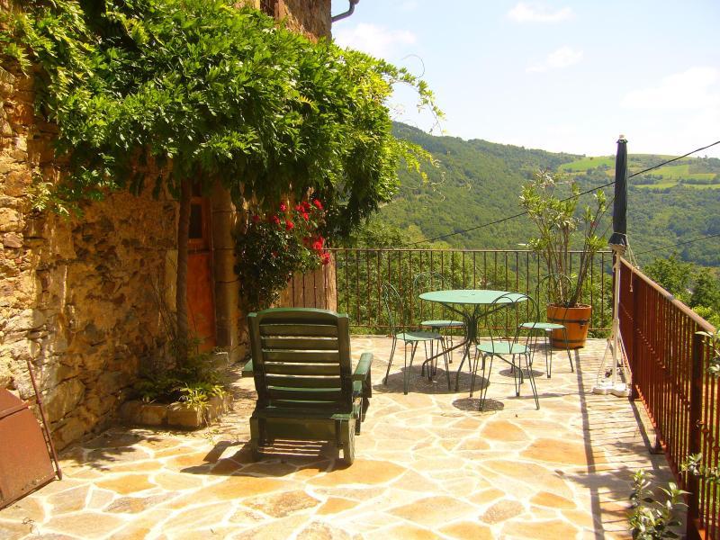 gite original beau et calme in large wooden domain - Image 1 - Saint-Sernin-sur-Rance - rentals