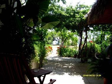 A1(2+1): garden terrace - 8030  A1(2+1) - Orebic - Orebic - rentals