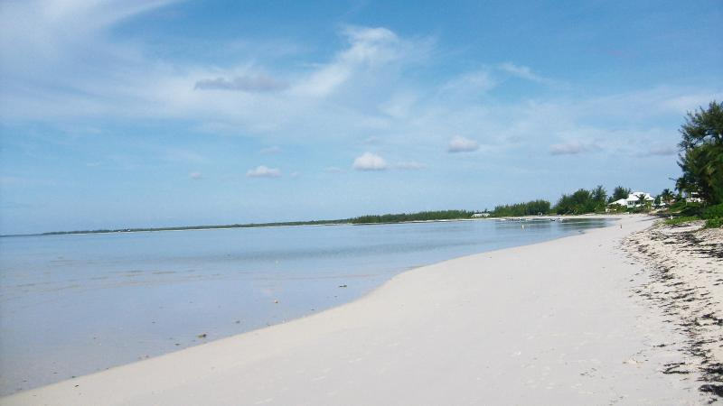 the beautiful beach - TRADE-WINDS 3 bed villa 200ft from beach - Abaco - rentals