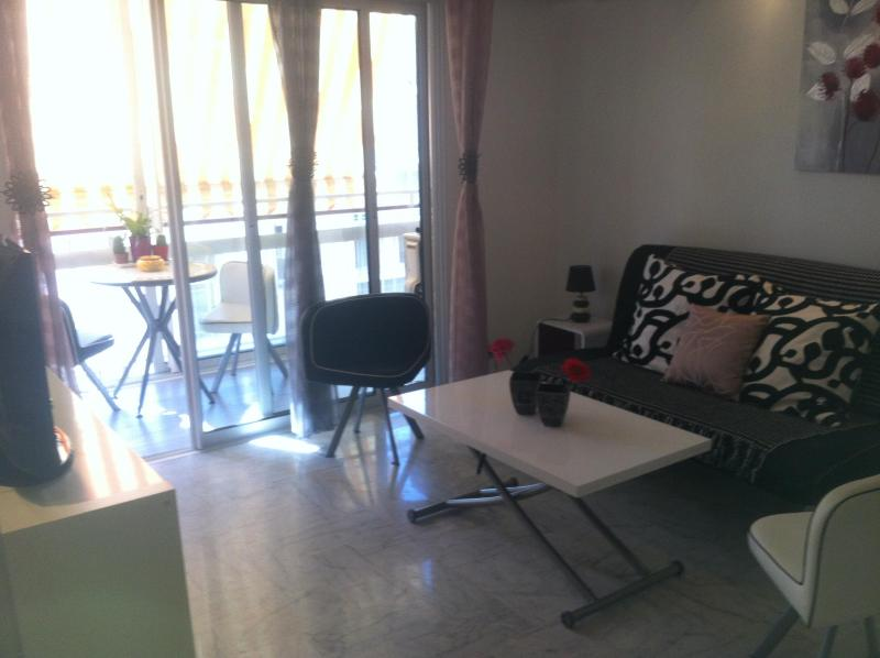Lovely Apartment in Juan les Pins, Antibes - Image 1 - Juan-les-Pins - rentals