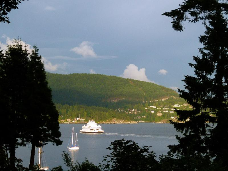 Ocean View from the Lounge - Simply Safari Suite Pet Friendly with Ocean View! - Bowen Island - rentals