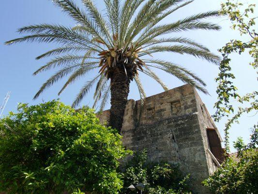 Chevaliers Inn - CHEVALIERS INN Medieval StoneHouse Old Town Rhodes - Rhodes - rentals