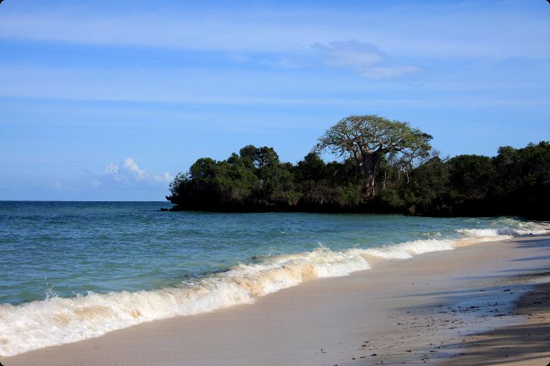 Beach a few paces away - Diani Beach, Villa Moja, Kenya - Diani - rentals