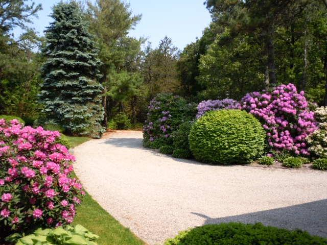 Circular Driveway Loop - PRIVATE OSTERVILLE ESTATE - Osterville - rentals