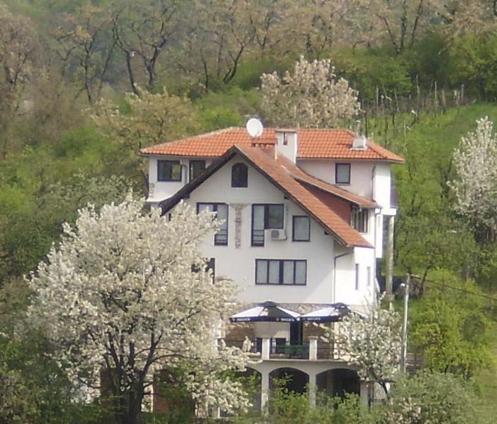 Building - Villa Lorena - Zagreb - rentals