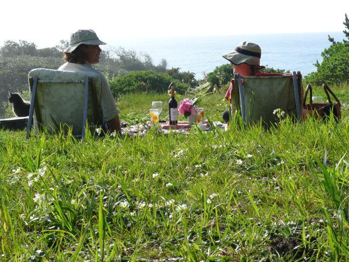 Picnic on your own bluff over the ocean - Romantic Beach House Oregon Coast - Gold Beach - rentals