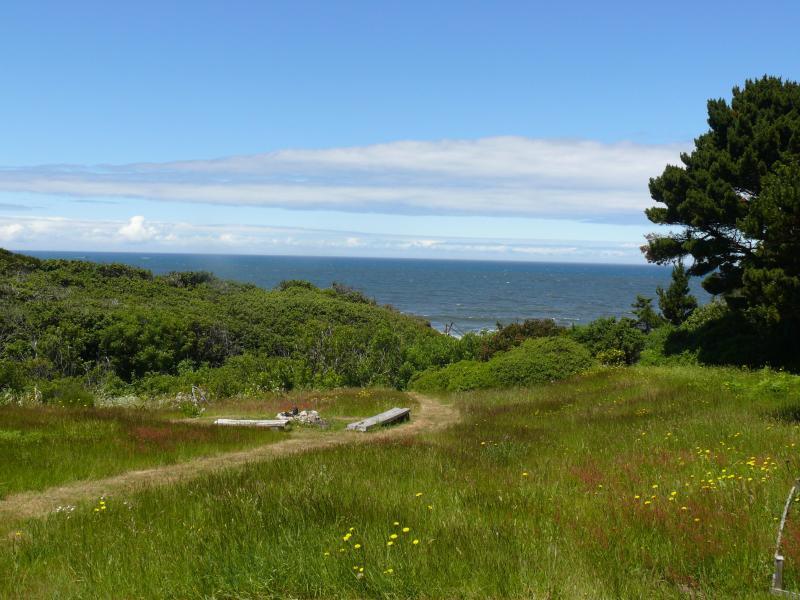 backyard - Romantic Beach House Oregon Coast - Gold Beach - rentals