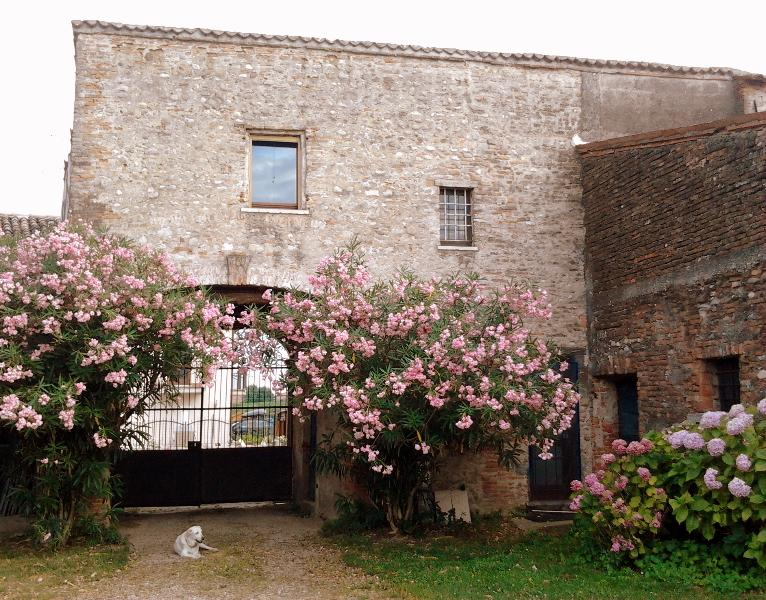 the external facade to the garden - Holidays in a cottage near Verona! - Zevio - rentals