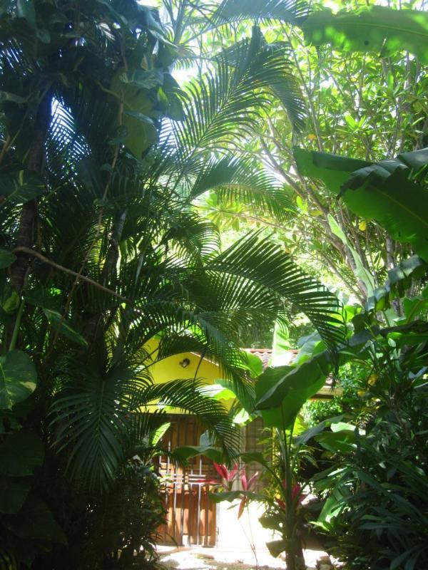Entrance - Casa Del Halcon - Guanacaste - rentals