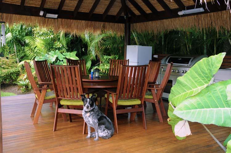 Exquisite comfort book wine it's a dogs life. - Angie's Garden Retreat - Pialba - rentals