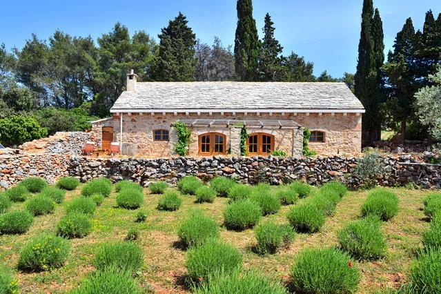 Traditional dalmatian house Humac - Image 1 - Jelsa - rentals