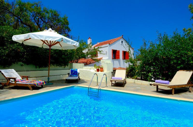 VILLA ANTIGONI - Antigoni Pool Villa - Skopelos - rentals