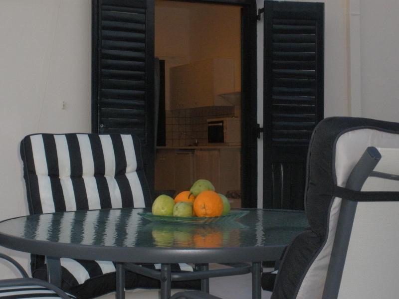 Veranda. - Lovely  Apartment, 100 meters  from the sea - Kokkini Hani - rentals
