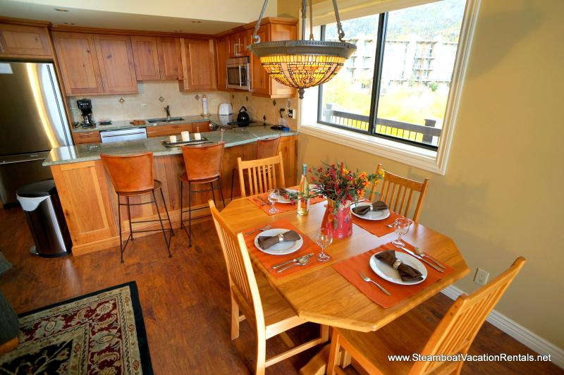 Storm Meadows Club C #419 - Image 1 - Steamboat Springs - rentals