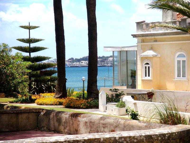 Nice Apartment - Sea Front 40m From Beach - Image 1 - Cascade - rentals
