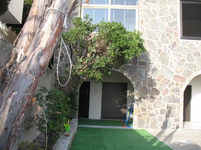 Entrance - Villa Fiorenza - Santa Maria di Castellabate - rentals