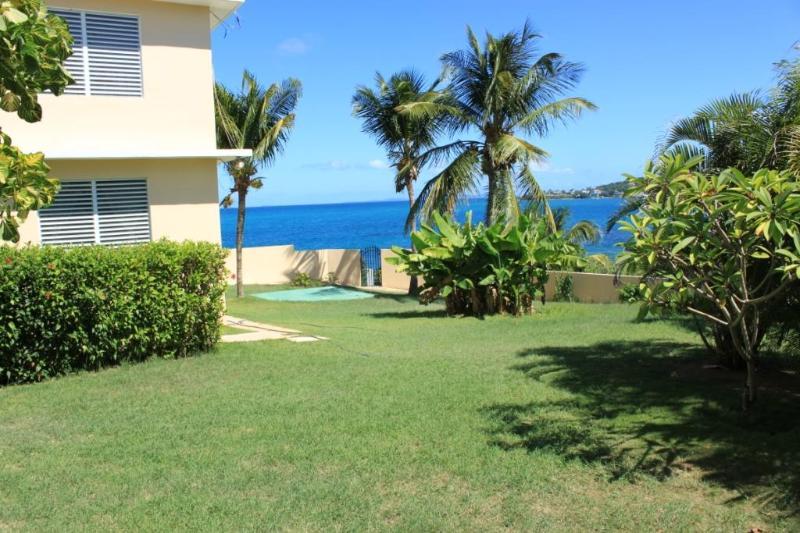 The Sands - Harbour View - Rare Vieqeus Oceanfront - Image 1 - Vieques - rentals