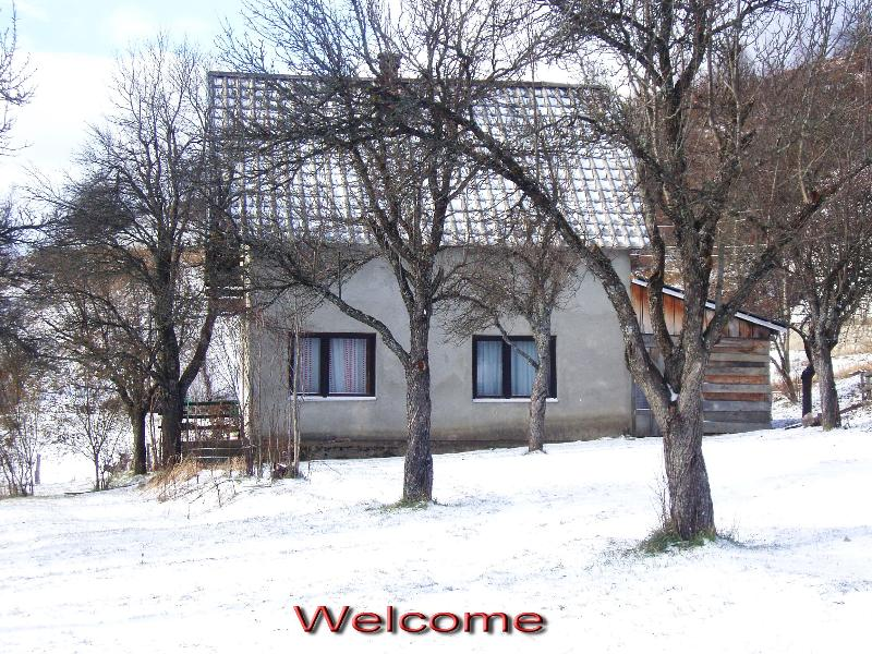 Wintertime at Country House Kolasin - Country House in a Plum Orchard by Kolasin River - Kolasin - rentals