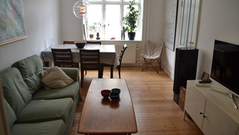 Thorsgade Apartment - Newly renovated Copenhagen apartment at Noerrebro - Copenhagen - rentals