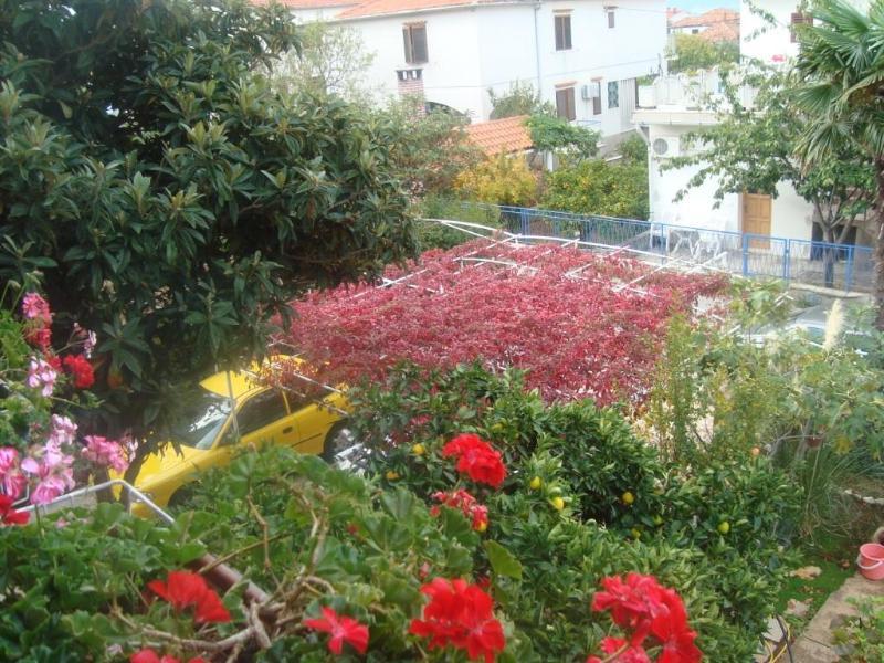 Hela apartament - Image 1 - Zadar - rentals