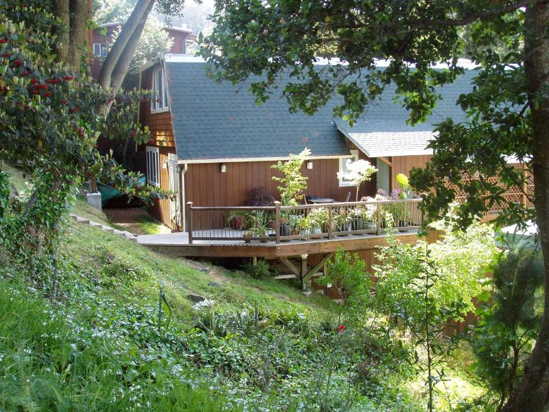 Beautiful hillside environment, spacious comfy living, hike to 2 beaches and ridge for sunset. - Spacious 3b Retreat Vus 10min2SF  Hike2 2 beachs - Mill Valley - rentals