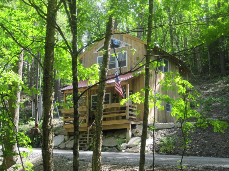 Hinkley Brook Cabin, Romantic Getaway In The Trees - Image 1 - Grafton - rentals