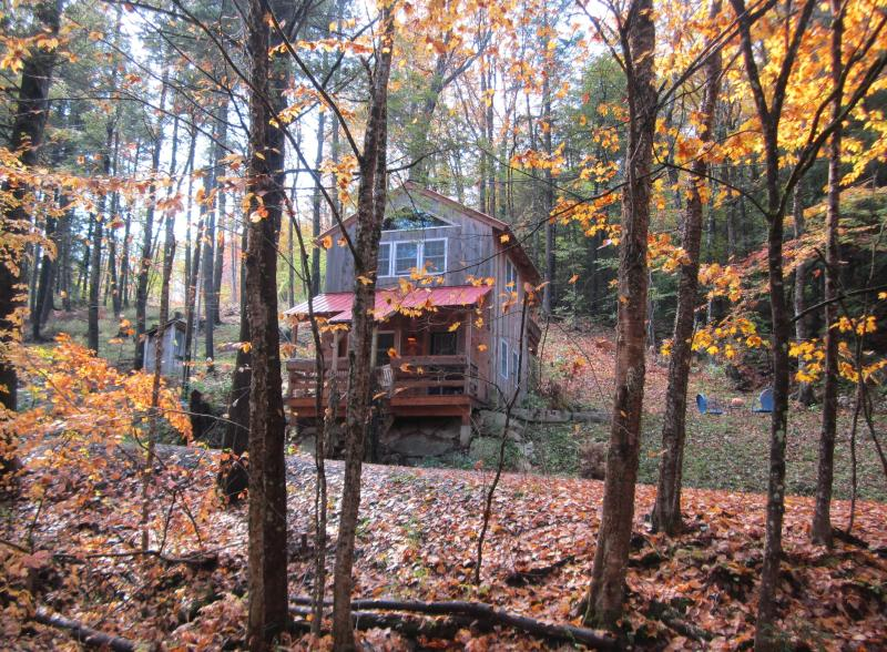 Hinkley Brook Cabin, Romantic Getaway In The Trees - Image 1 - Grafton - rentals