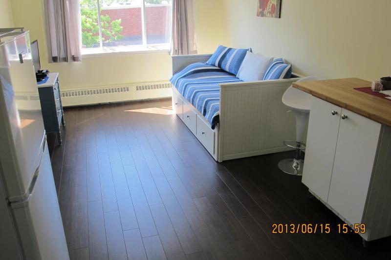 Bright studio with afternoon sun exposure - SOSHE 404 - adjacent MUHC Glen Campus - Montreal - rentals