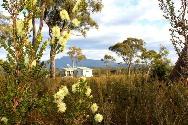 Buttongrass Retreat (southernmost in Australia) - Image 1 - Dover - rentals
